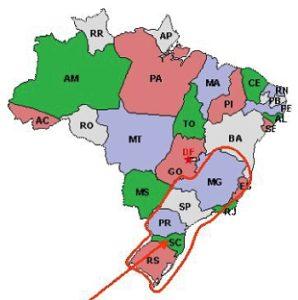 svin brasilen